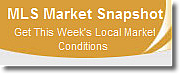 Carmen Millers Free Market Snapshot Report