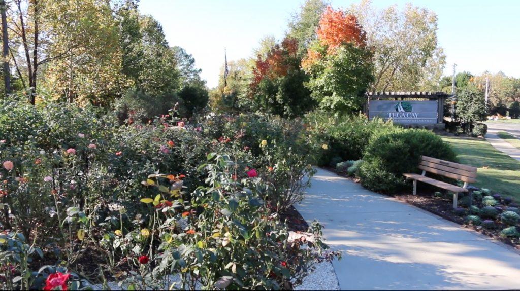 tega-cay-living-memorial-gardens-picture